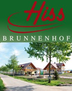 Hiss-Brunnenhof
